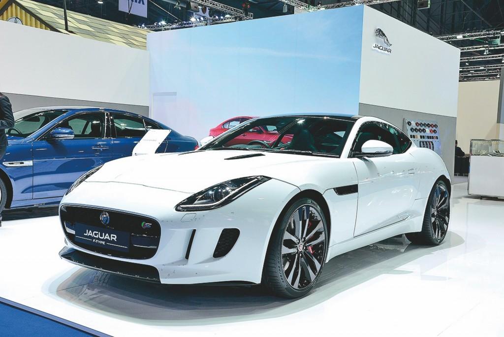 jaguar (Copy)