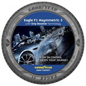 Goodyear Eagle F1 Asymmetric 3 (4)