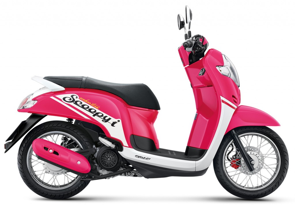 Scoopy  i_2