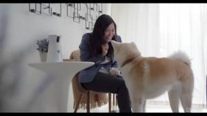 FURBO DOG CAMERA เครื่องให้อาหารไฮเทค สำหรับสุนัขขี้เหงา