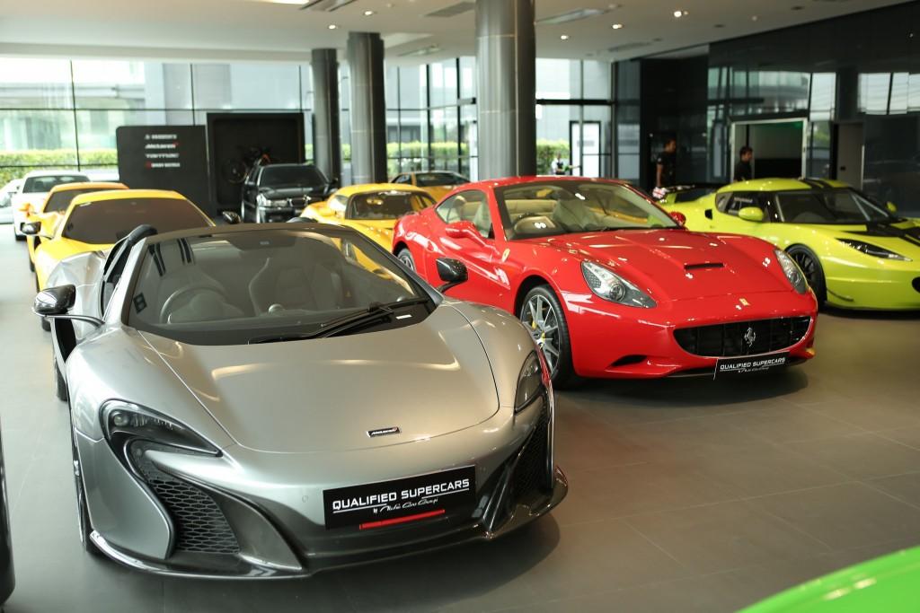 Niche Cars (17)