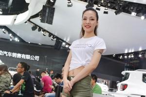 มหกรรมยานยนต์ เซี่ยงไฮ้ 2017