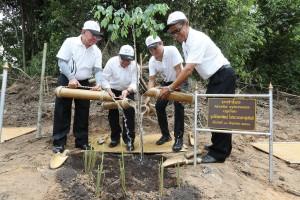 ขับ ซีอาร์-วี ไปสร้างฝาย อนุรักษ์ ดิน น้ำ ป่า