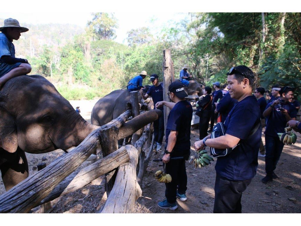 37.ปางช้างเชียงดาว - ป้อนกล้วย