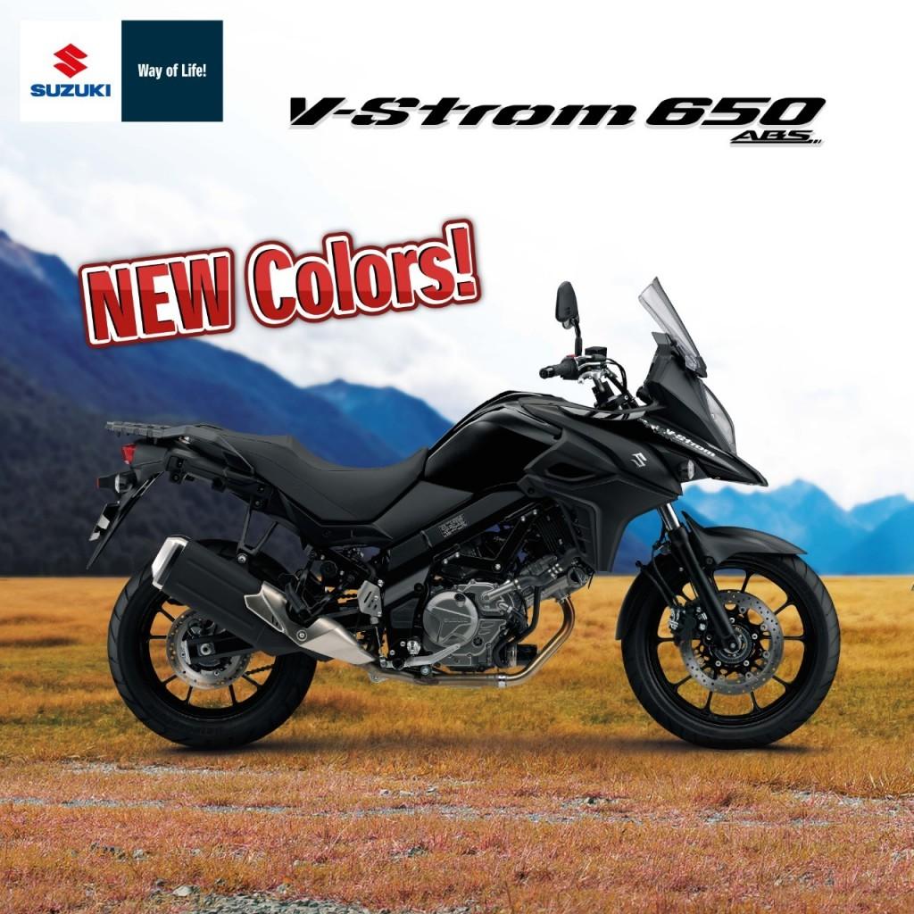 V-Strom650NewColor_๒๐๐๘๐๔_1