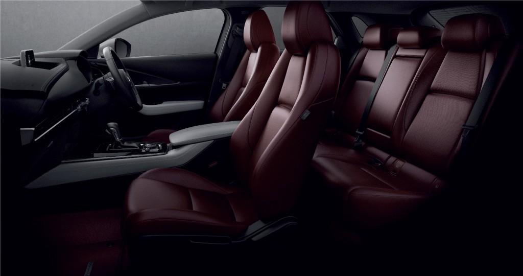 12_Mazda CX-30 100th Anniversary Edition