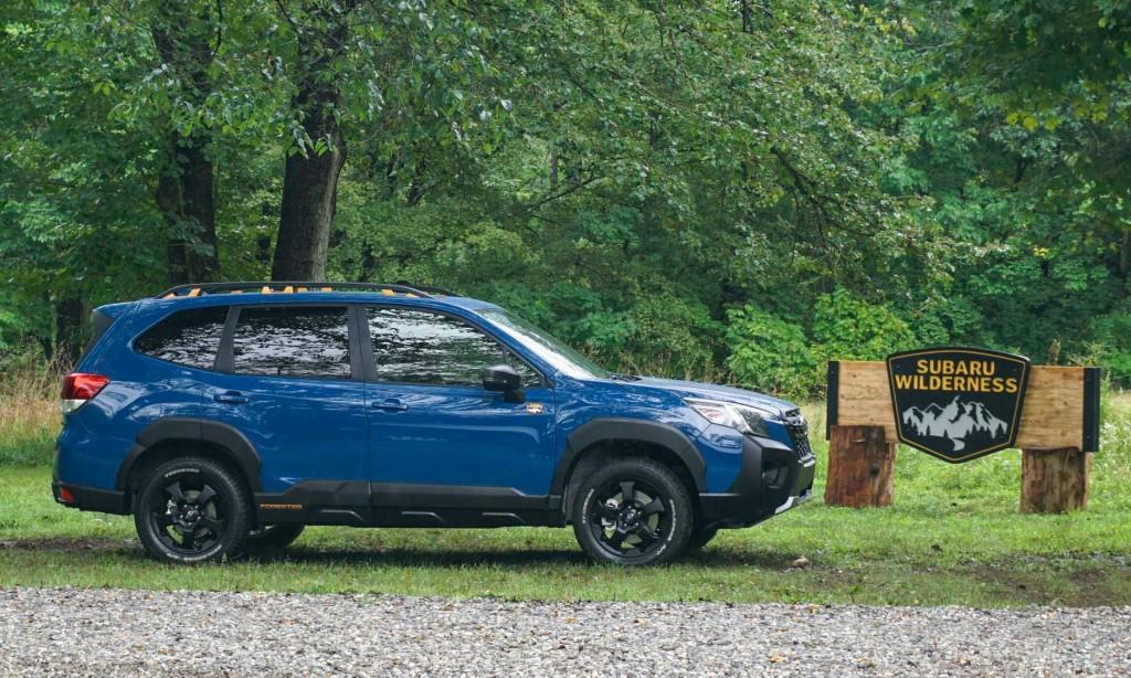 Subaru Forester Wilderness  (19)
